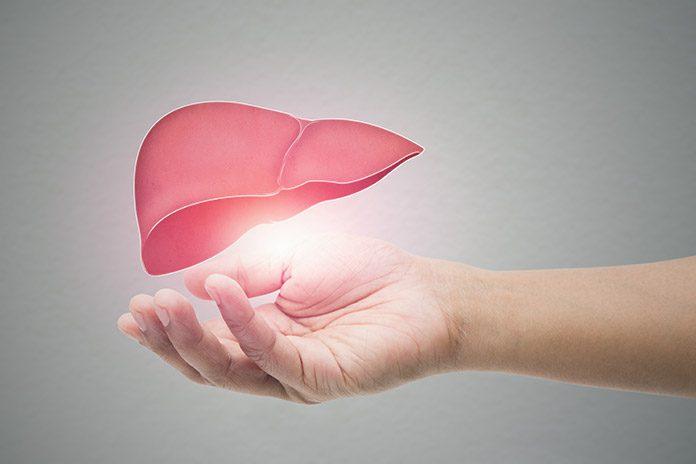 Zdravje jeter