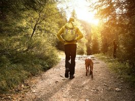 Hoja - pozitivni učinki na zdravje